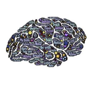 Hjärnan2